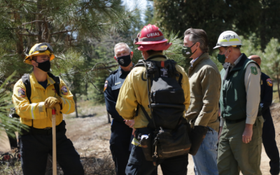 Governor Newsom Tours Sierra Fuel Break, Highlights Agreement with Legislative Leaders on $536 Million Wildfire Package